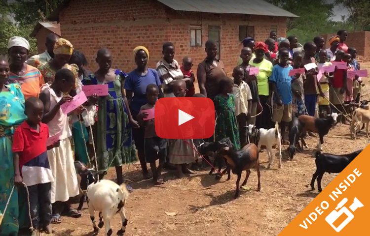 Goats For Orphans / Sharing the Blessing