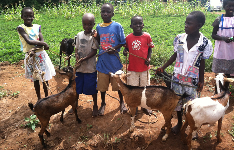 Goats 4 Orphans - Sharing the Blessing With Others